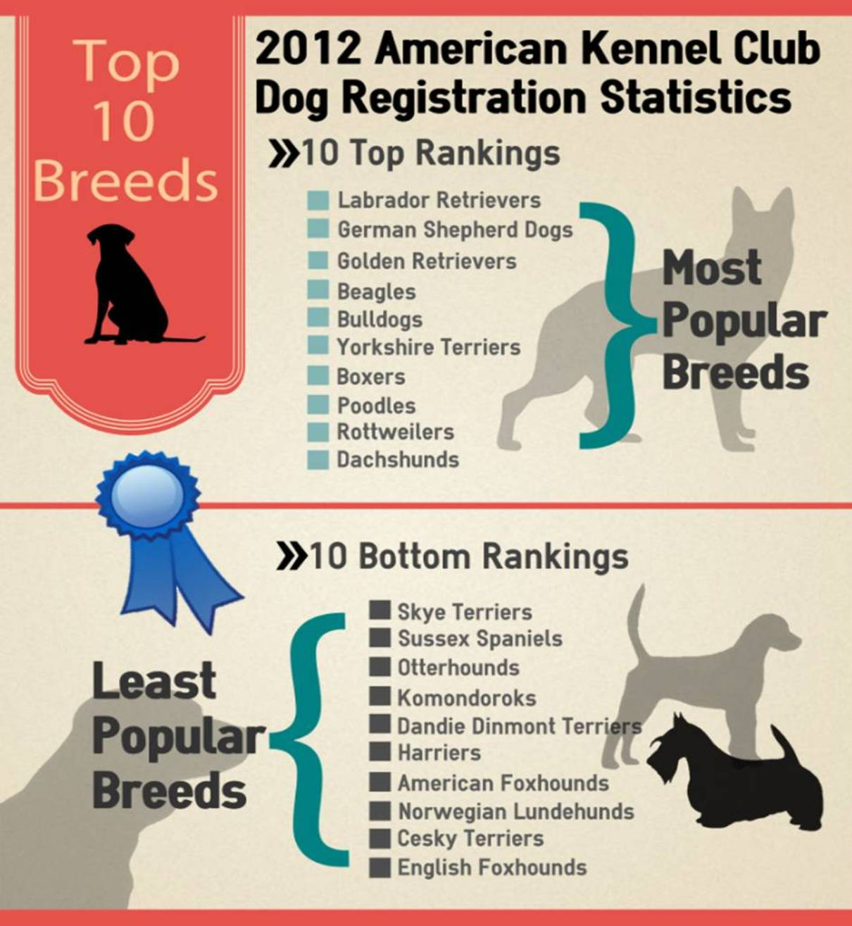 Top 10 most and least popular breeds american kennel club