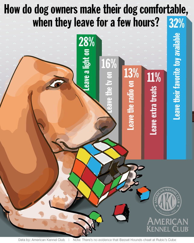 Infographic_LeaveDogWhat