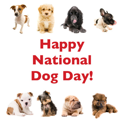 national-dog-day-FINAL