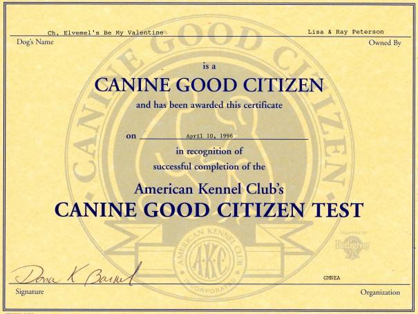 CGC Certificate