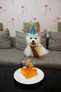 FOAPbirthday-cake-08ea9a78eb14441197dcdcb60f224ab5
