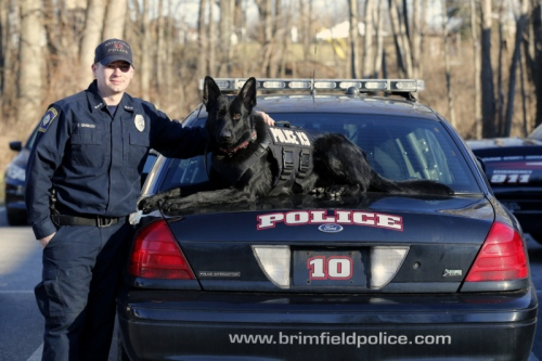 Brimfield Township K9 officer Paul Gramlich with his dog Pseudo, a male German Shepherd, at the department in Brimfield Township. (Karen Schiely/Akron Beacon Journal)